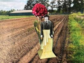 """Anke Lohrer""""Forever dahlia blossom for Lintvelde (small) site"""